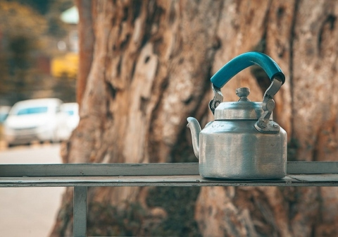 Electric vs. Stove Top Tea Kettle Picture