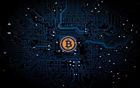 Is blockchain overhyped The rise and fall of technology